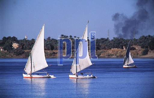 Feluccas sailing on the River Nile Egypt