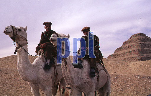 Egyptian policeman on camels by the Step Pyramid Egypt