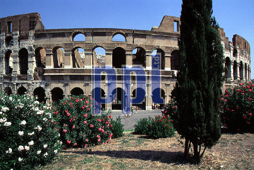 The Coliseum Rome Italy