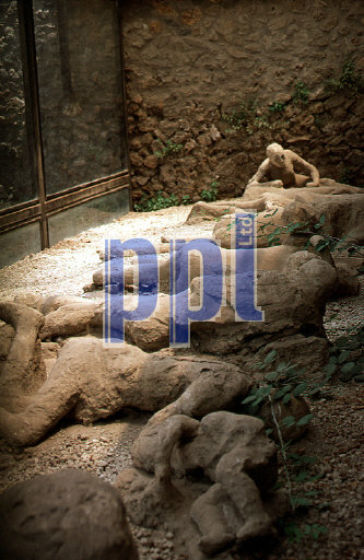 Garden of the Fugitives Pompeii Naples Italy