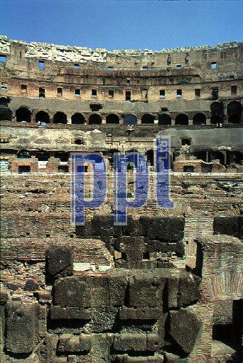 The Coliseum Rome Italy