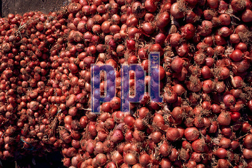 Onions for sale Tangier Morocco