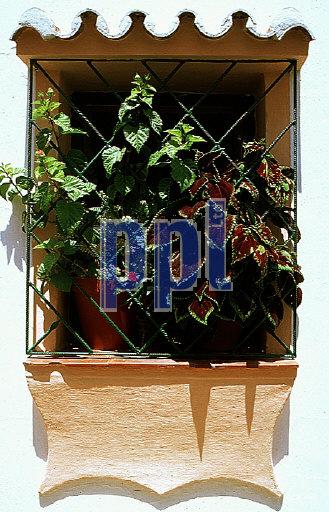 Regional architecture.  Window with pot plants, Spain