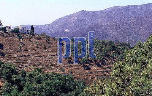 Andalucia Costa del Sol Spain